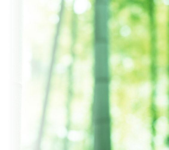 绿色ppt背景图片,竹林淡雅绿色片素材 ,淡雅幻灯片背景图片
