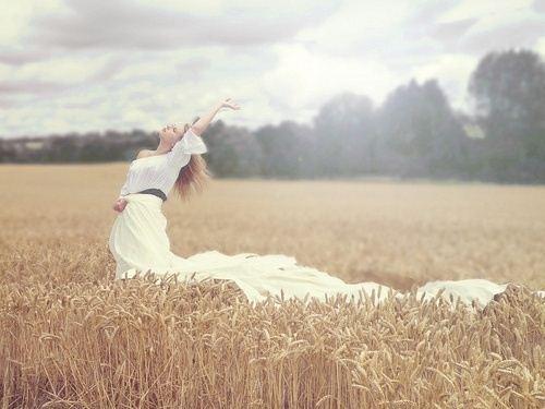 清新淡雅的稻田上女孩 唯美图片