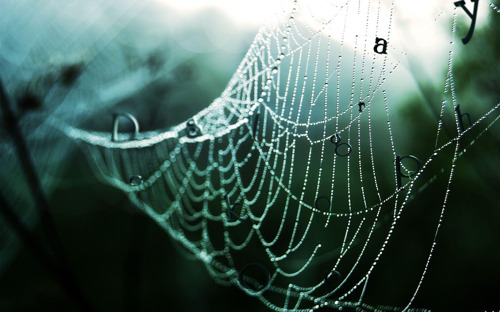 蜘蛛网上的水珠ppt梦幻 空间背景图片素材