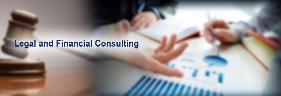 legal and financial consultancy delhi