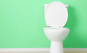 $50 for Euro Toilet Fill Vales-Three
