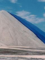 road salt impacts