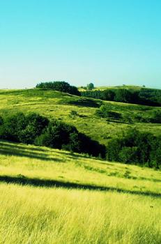 青山绿草山顶风光精美手机壁纸
