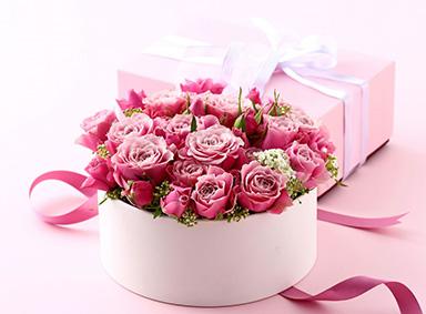 唯美粉红花卉电脑壁纸
