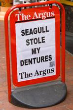 Illustrating The Argus: Brighton newspaper's billboards have inspired a new art exhibition