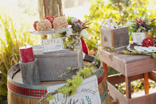 rustic-christmas-wedding-ideas-sweets-station