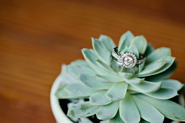 succulent ring shot, simple lakeside wedding, peach, pink, beige, cream, and mint wedding ideas, Ruth Eileen Photography
