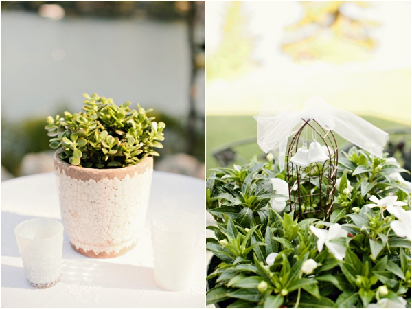 potted succulents wrapped with lace, wire birdcage with tulle bow and wedding bells, simple lakeside wedding, peach, pink, beige, cream, and mint wedding ideas, Ruth Eileen Photography
