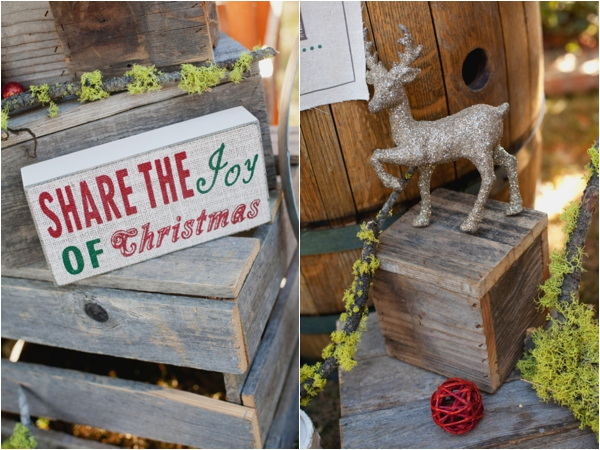 rustic-christmas-wedding-ideas-decor