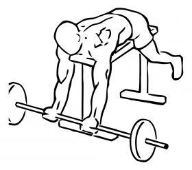 Lying High Bench Biceps Curl with Barbell 1