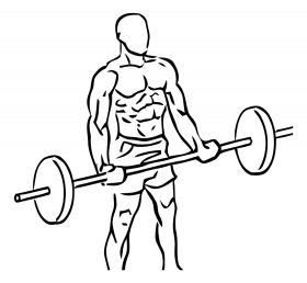 Wide Grip Standing Biceps Curl with Barbell 1