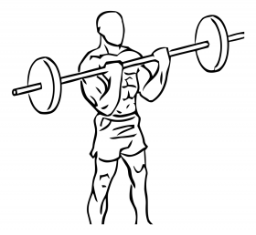 Close Grip Standing Bicep Curls with Barbell 2