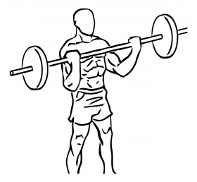 Wide Grip Standing Biceps Curl with Barbell 2