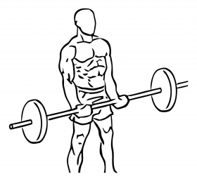 Close Grip Standing Bicep Curls with Barbell 1