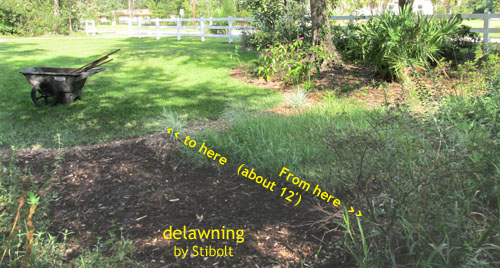 Looking toward the lawn, you can see the extent of this project--about twelve by fourteen feet of lawn removal.