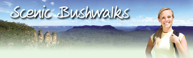 Scenic Bushwalks