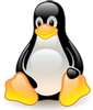 newTux_100