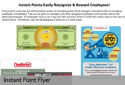 Instant Point Flyer for Sales
