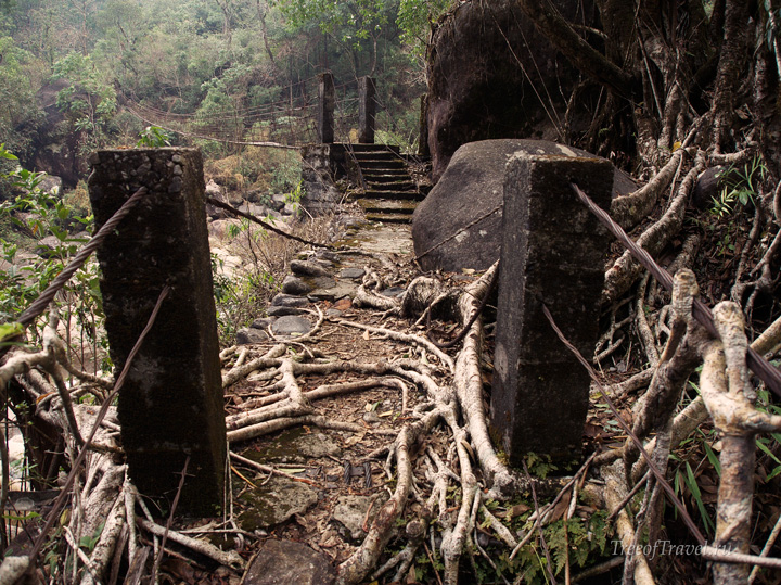 Мосты в джунглях деревни