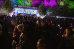 The 5 Best Moments Of Firefly 2015 Saturday