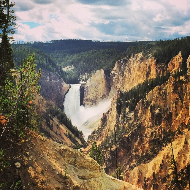 Lower falls in Yellowstone is always a site to see. #wyoming #yellowstone
