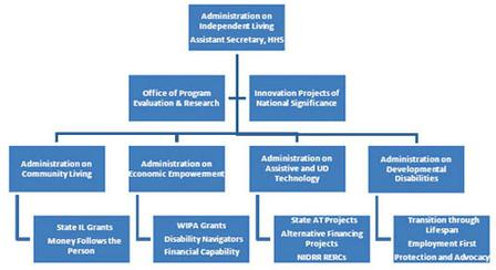 Graphical representation of the possible organizational structure of an independent living administration