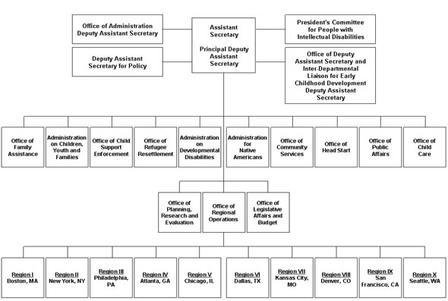 Graphical representation of the ACF Organizational Structure in 2011