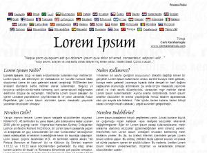 lipsum1 300x222 Zaman Kazandıran Webmaster Araçları
