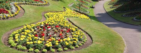 Planting the seasonal displays for Guildford's Castle Grounds