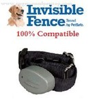 Invisible-Fence-Compatible-Collars
