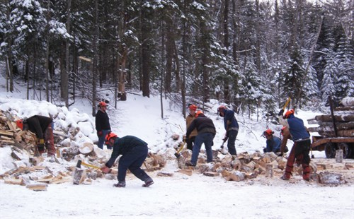 Students from Paul Smith's College learning to process firewood.Photo Credit: Joseph Orefice
