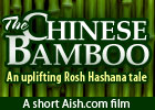 The Chinese Bamboo