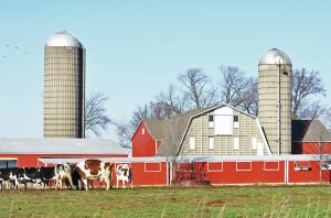 Successfully operating a dairy farm of any size in the 21st century ultimately comes down to aggressive and competent management, as well as the dedication and cooperation of many people. Photo by steverts/thinkstock.com.