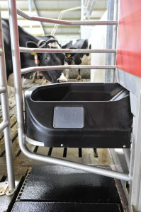 The cow is motivated to visit the milk robot by her individually portioned feed. Photos courtesy of Lely.