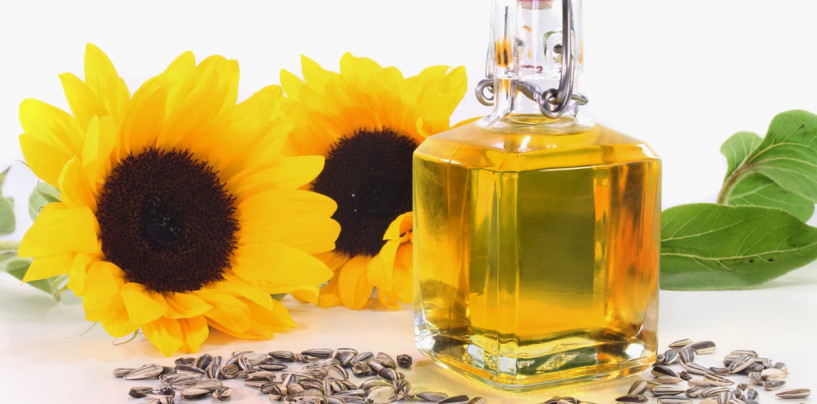 Sunflower Oil and Its Benefits for the Everyday Consumer