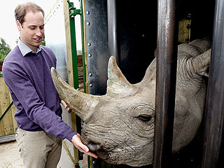 Prince William to Make Plea on Chinese Television to End Illegal Wildlife Trade