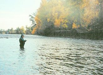 Summer Steelhead Fly Fishing on the Rogue River