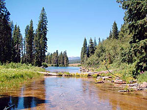 Flyfishing, Wood River Flyfishing, Wood River, Jackson Kimball State Park / Upper Klamath Basin / near the springs