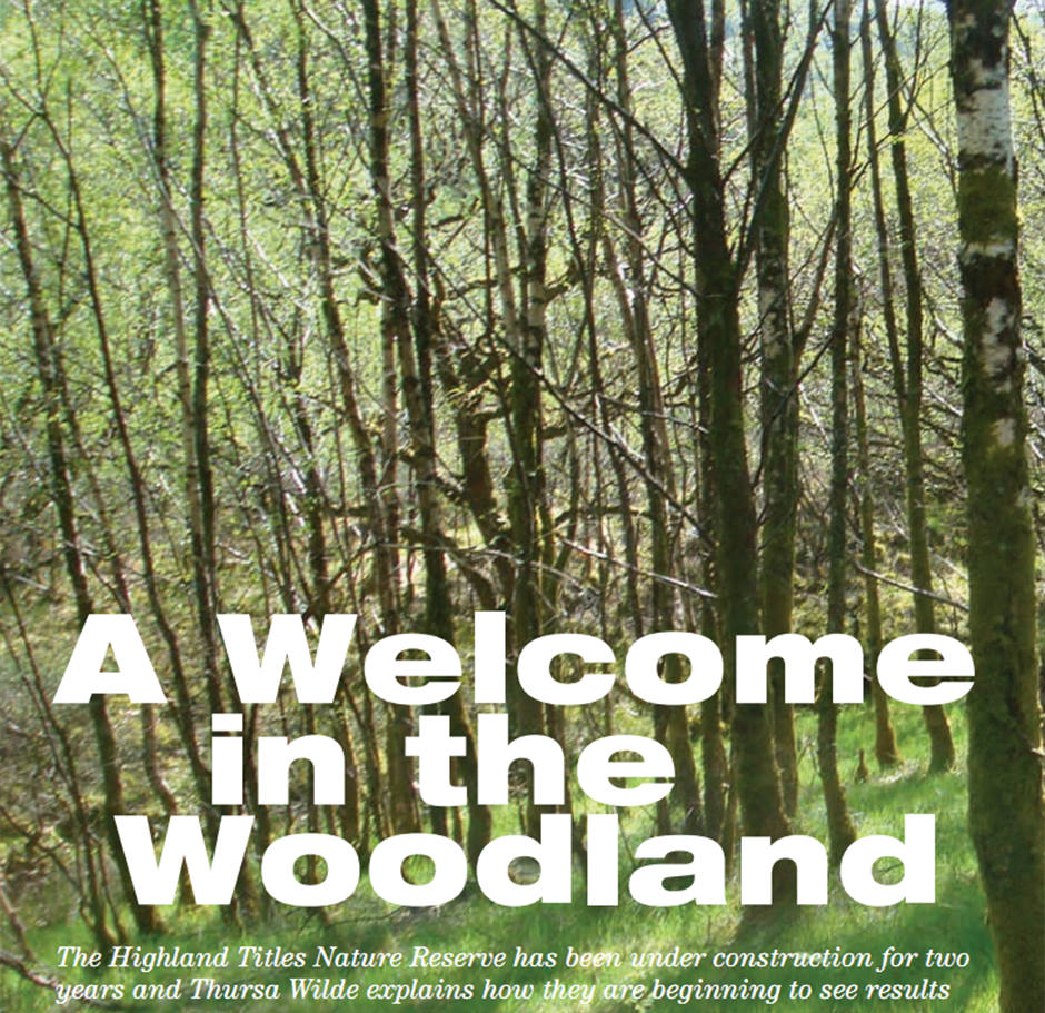 A Welcome in the Woodland