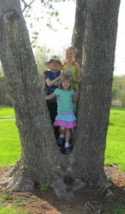 Homeschool kids in a tree