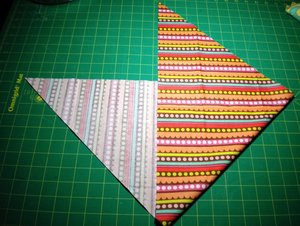 fold in half, lining up cut edges