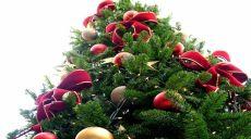 El árbol de Navidad - sus orígenes y sentido cristiano