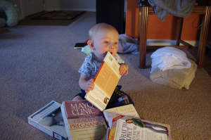 Remy enjoys chewing on books