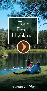 Tour Forest Highlands (Interactive Map)