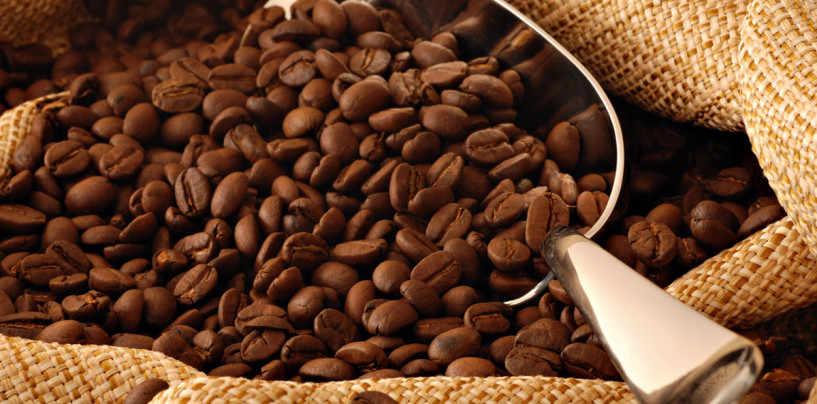 Coffee – How To Find The Best Coffee