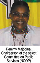 Pemmy Majodina, Chairperson of the Select Commitee on Public Services (NCOP)