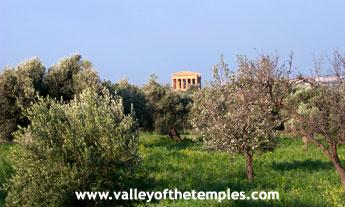 Storia di Agrigento. Periodo greco