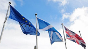 European Elections Politicians more concerned with the referendum