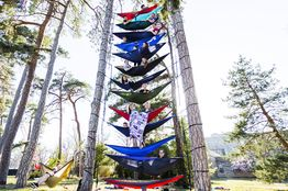Colleges Ban a Red-Hot Hangout: Hammocks