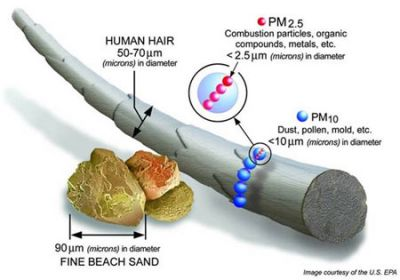PM25Size